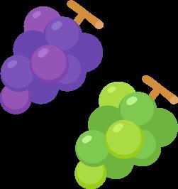 大粒のブドウ・マスカットの無料ベクターイラスト素材
